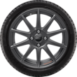 "Performance Wheel 17"" lightweight flow-form winter complete wheel with Ford Performance logo, 10-spoke design, Magnetite Matt"